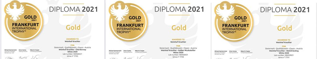 Gold_Frankfurt_International_Trophy_low_02